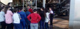 La Denominación de Origen Montes de Granada promociona su AOVE y hábitos alimenticios saludables