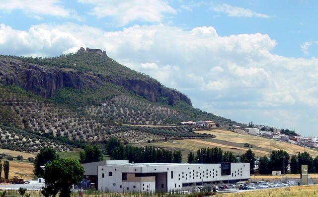 Almazara Aceite de Oliva Campopineda